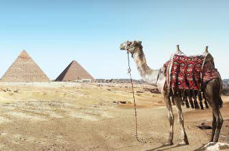 Путешествие в Египте